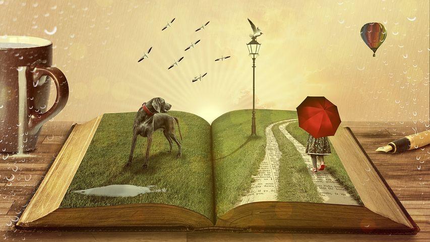 夢は課題を見つけ乗り越えることで、叶えられる。【夢は想像するだけのポジティブシンキングでは叶えれない】